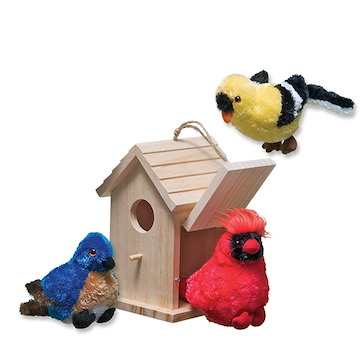 Birds and Birdhouse