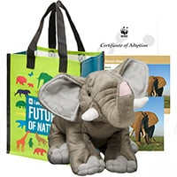 Elephant adoption kit
