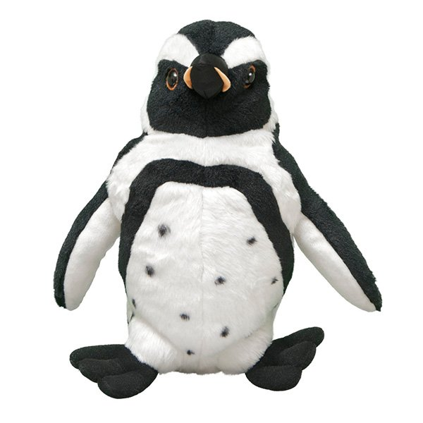 Adopt An African Penguin Symbolic Animal Adoptions From Wwf