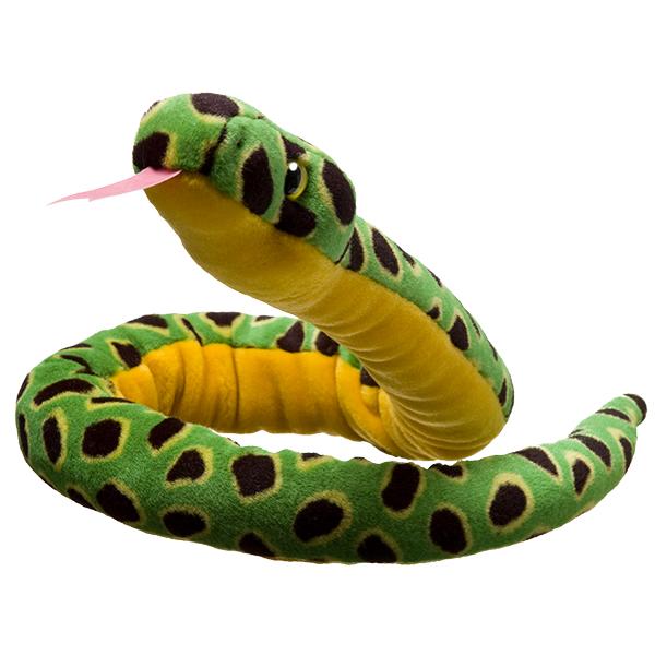 Adopt an anaconda | Symbolic animal adoptions from WWF