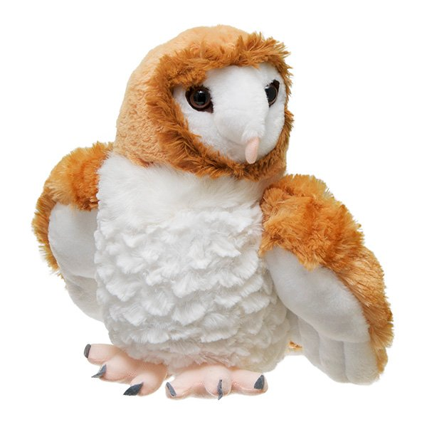 Adopt A Barn Owl Symbolic Animal Adoptions From Wwf