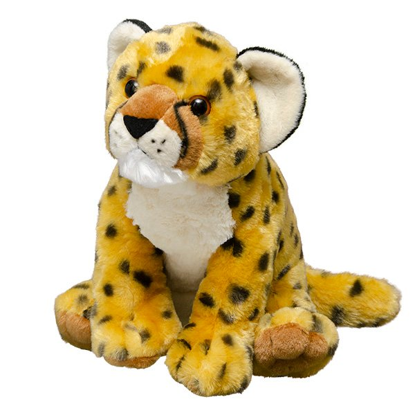 Adopt A Cheetah Symbolic Animal Adoptions From Wwf