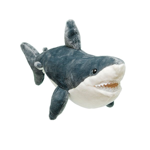 Adopt A Great White Shark Symbolic Animal Adoptions From Wwf
