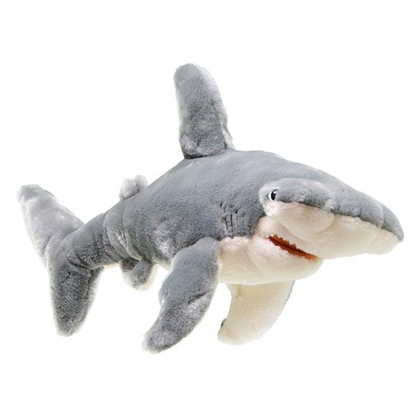 Hammerhead Shark Symbolic Animal Adoptions From Wwf