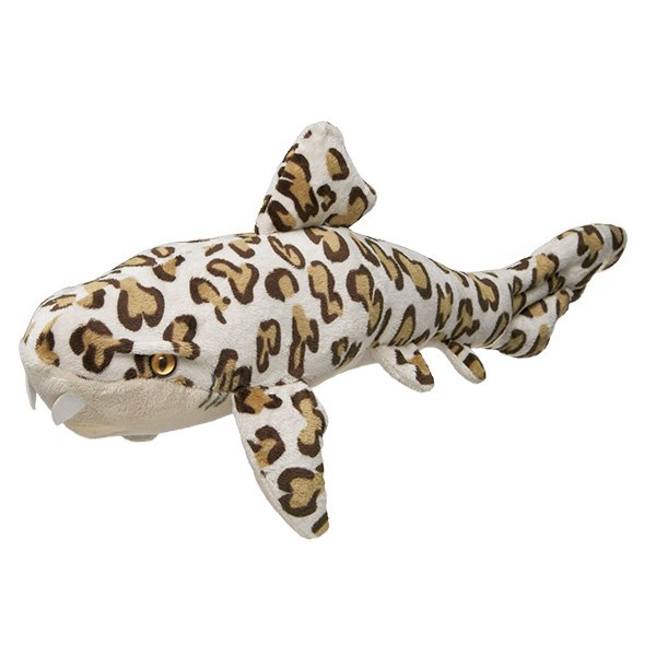 12 Million Dollar Stuffed Shark Pdf