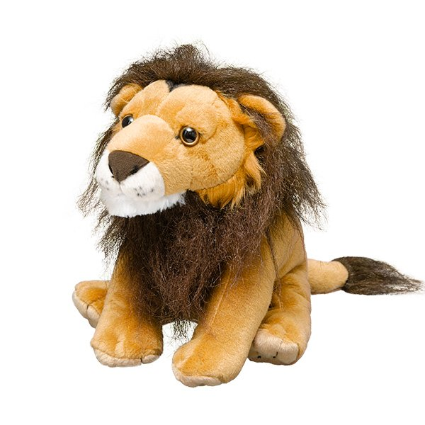 adopt a lion symbolic animal adoptions from wwf