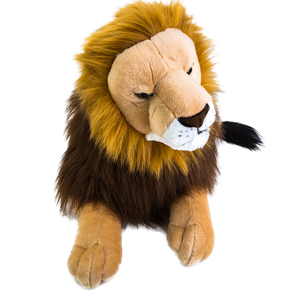 Adopt A Lion Symbolic Animal Adoptions From Wwf