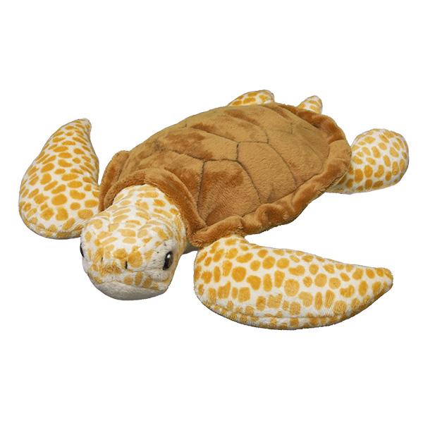 Adopt a loggerhead turtle | Symbolic animal adoptions from WWF
