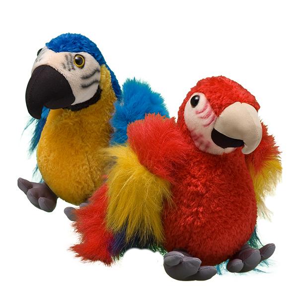 scarlet macaw blue and yellow macaw symbolic adoptions wwf