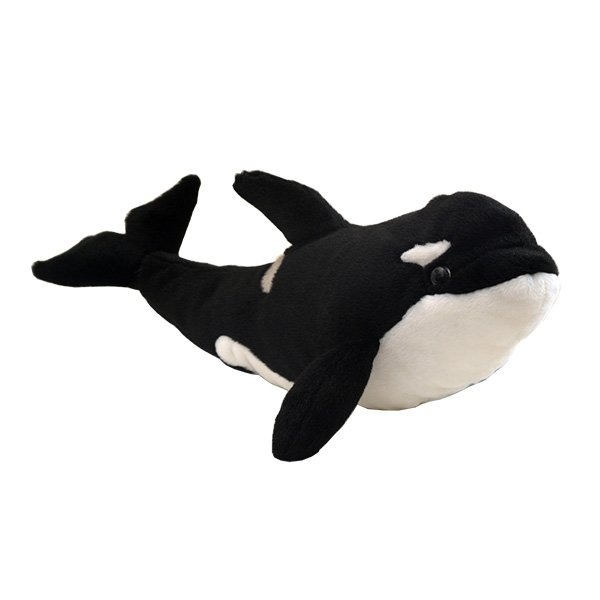 Adopt an orca whale | Symbolic animal adoptions from WWF