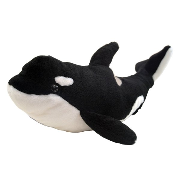 Adopt An Orca Whale Symbolic Animal Adoptions From Wwf