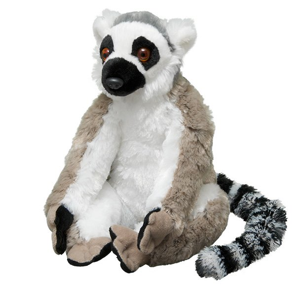 Adopt A Ring Tailed Lemur Symbolic Animal Adoptions From Wwf