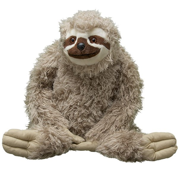 Adopt A Three Toed Sloth Symbolic Animal Adoptions From Wwf