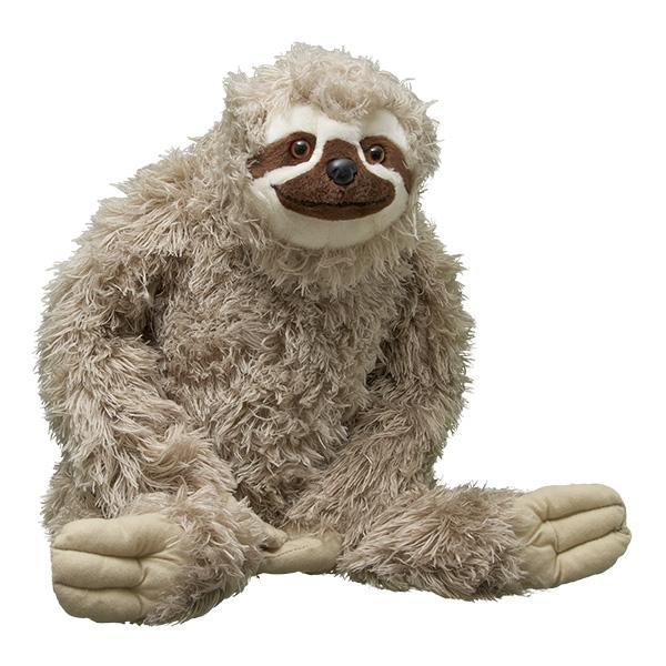 Adopt A Three Toed Sloth Symbolic Animal Adoptions From Wwf