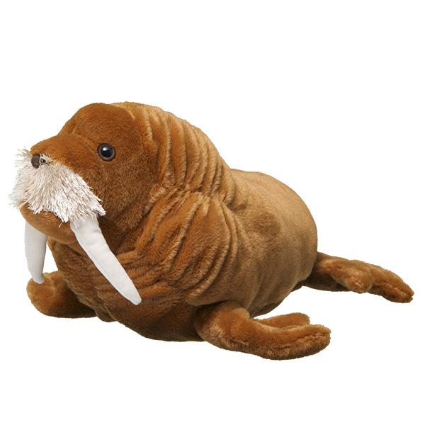 walrus animal symbolic adoptions from wwf