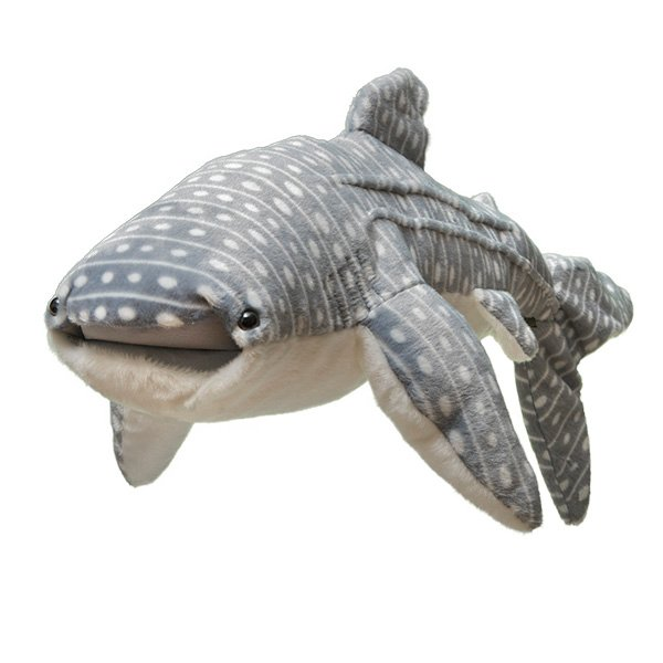 Adopt A Whale Shark Symbolic Animal Adoptions From Wwf
