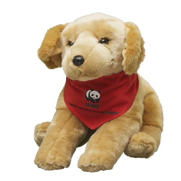 Sniffer Dog: Labrador Retriever